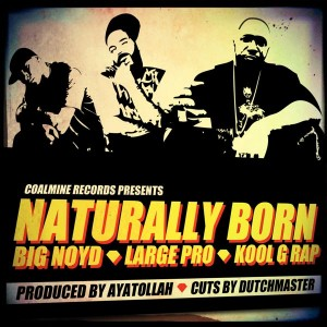 Big Noyd, Large Professor & Kool G Rap -