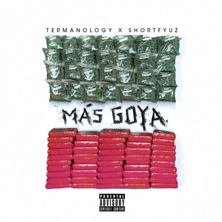 Termanology –