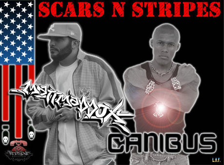 "Matt Maddox ft Canibus - ""Scars and Stripes""(MP3)"